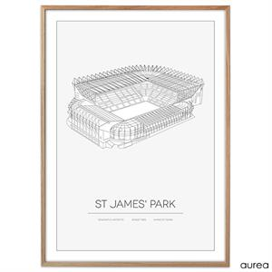 Plakat - St. James' Park, newcastle united FC