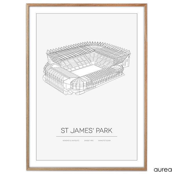 Plakat - St. James\' Park, newcastle united FC