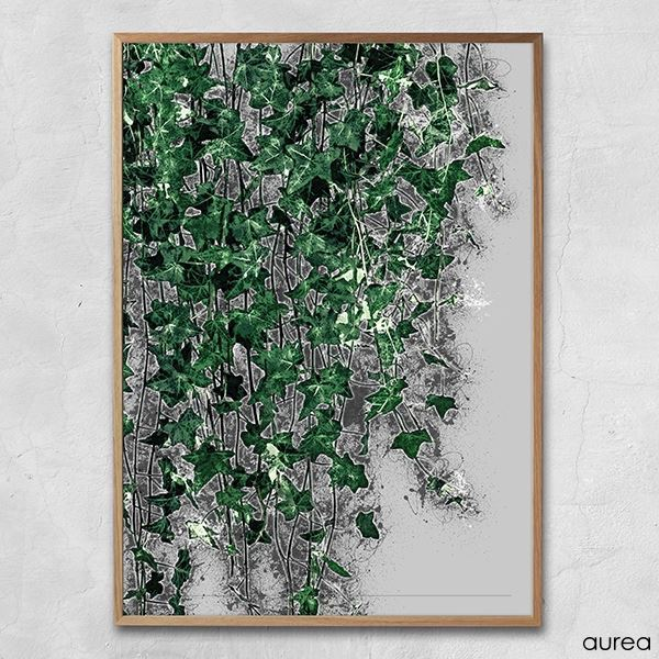 Plakat - Hanging plants no.1