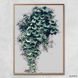 Plakat - Hanging plants no.2