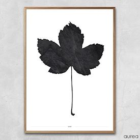 Plakat - Simple Maple