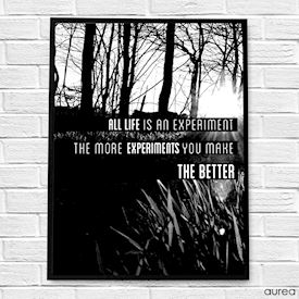 Plakat med tekst - Life is an experiment